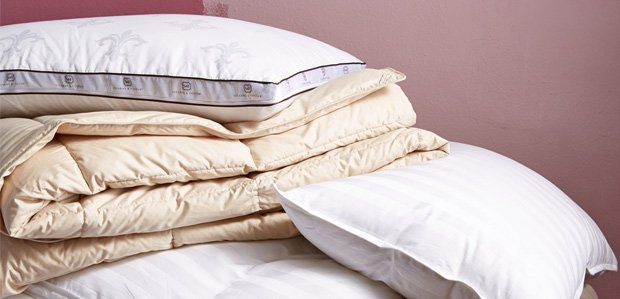 The Down Shop: Fluffy Comforters, Pillows, & More