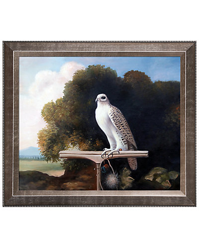 Greenland Falcon by George Stubbs Oil Reproduction