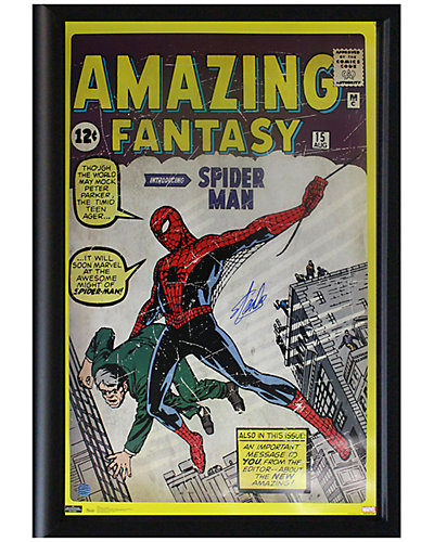 Steiner Sports Signed Stan Lee Framed Amazing Spider Man Poster